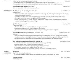 Cute Resume Builder Google Images Resume Ideas Namanasa Com