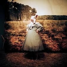 The Wake - Jenny Fine - Visual Artist
