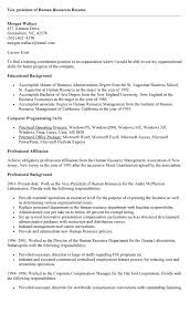 Best Photos Of Vp Human Resources Cover Letter Vice President