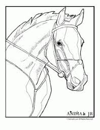 Small Picture This coloring page for kids features a young girl feeding a horse