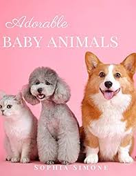 adorable baby animals a beautiful
