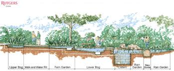 Small Picture Charming Delightful Rain Garden Design Rain Garden Rutgers Gardens
