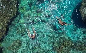 Transparent Canoe Kayak These Transparent Kayaks Give You Incredible Views Of The Ocean