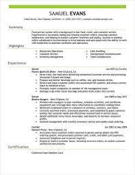 Resumee Example Resume Format Examples Examples Format Resume Job Info Resume