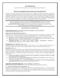 entrepreneur sample resume template entrepreneur sample resume