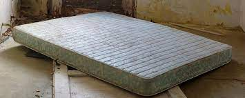 all about mold on mattresses the