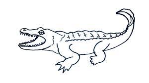 crocodile drawing for kids. Beautiful Crocodile Crocodile Drawing  How To Draw Easy Step By For  Kids With For Kids O