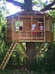 related post basic tree house pictures37 house