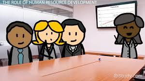 organizational success factors definition video lesson human resource development function role