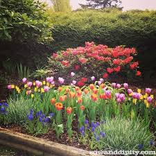 Small Picture Flower Garden Design Ideas