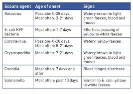 Image Result For Calf Diarrhea Chart Calves Farm Animals