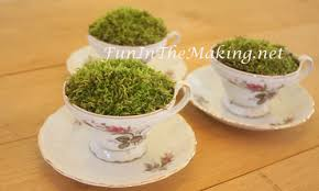 Decorating With Teacups And Saucers Moss Filled Tea Cup Party Table Decoration Fun In The Making 55