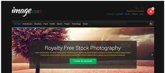 7 Photography Website Templates You Cant Miss Pixelemu