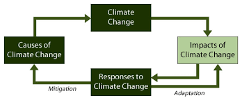 Flow Chart Of Causes Of Global Warming 3 Responding To Global Climate Change The Geographer Online
