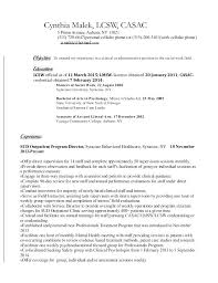 Official Resume Format Official Resume Template Elegant Professional