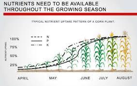 Plant Soil Nutrient Availability