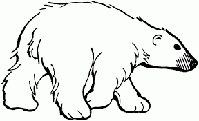 Small Picture Polar Bear Color Page Polar Bear Coloring Pages Printablesjpg