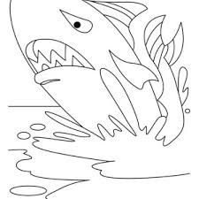 Small Picture Whale Shark Coloring Pages Finest Dori Fish Coloring Pages