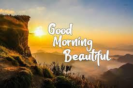 top 40 best good morning beautiful