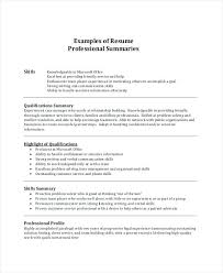 Summary Statement Resume Examples Abstract Resume Examples Summary