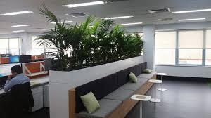 d l indoor plant hire garden maintenance pty ltd