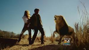 """<b>James Patterson</b> & Cast Members Discuss New CBS Series """"<b>Zoo</b> ..."""