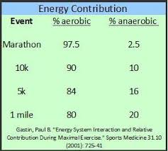 Why Is Aerobic Training Important To Runners Runners Connect