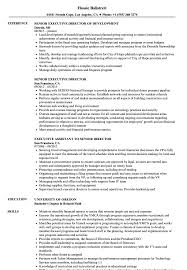 Director Resume Examples Senior Executive Director Resume Samples Velvet Jobs 14