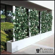 outdoor partition wall to enlarge outdoor partition wall ideas outdoor partition wall