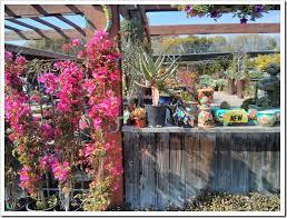 terra garden center lakeville mn