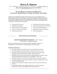 New Media Specialist Sample Resume Awesome 4444 Social Media Specialist Resume Sample Lawrencesmeats