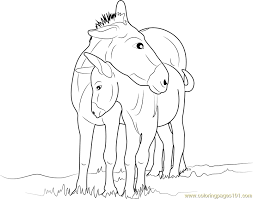 Small Picture Mother and Baby Donkey Coloring Page Free Donkey Coloring Pages