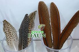 What Store Sells Dream Catchers Dream Catcher Feathers in Malaysia Green Daun 49