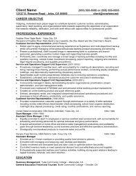 Bank Teller Responsibilities For Resume New Teller Resume Pdf Resume