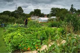 garden planning farm gardens