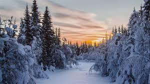 winter mac backgrounds the sunset in winter mac wallpaper download allmacwallpaper