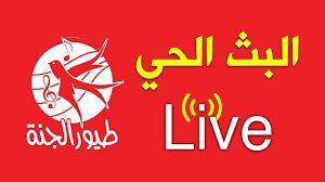 طيور الجنة مباشر - Toyor Aljanah Live - YouTube
