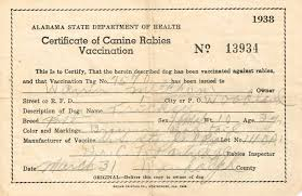 rabies vaccination certificate alabama certificate of canine rabies vaccination 1938 imgur