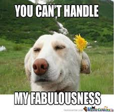Fabulous Dog by nedim.nickelto - Meme Center via Relatably.com