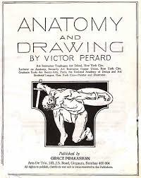 545x685 human anatomy drawing books pdf anatomy books principles