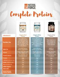 Protein Powder Comparison Chart How To Pick A Protein Powder Quick Easy Guide