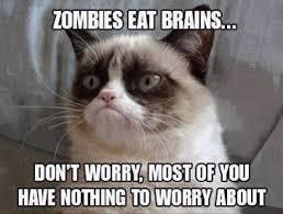 grumpy cat quotes frozen. Unique Quotes Top 40 Most Funniest Grumpy Cat Pics Captions To Grumpy Cat Quotes Frozen P