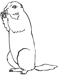 Prairie Dog Coloring Pages To Print Brown Page Free Printable Alex