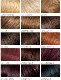Majirel Color Chart 2019 Hair Colour Chart In 2019 Loreal Hair Red Hair Color