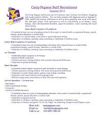 Professional CV Writing Services In Auckland All NZ Resume Unique Camp Counselor Resume