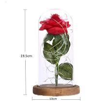 Enchanted Led Rose Light Amazon Com Beauty The Beast Battery Rose Powered