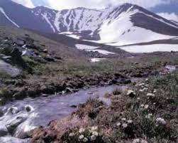 Национальные парки и Заповедники Казахстана Заповедник Аксу Джабаглы Заповедник Аксу Джабаглы