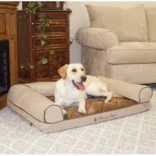 best sofa for dogs. Hot Dog Sofa Pet Bedluxury Snoozer Luxury Best Beds Wholesale Amazon Com Kh Manufacturing Memory Foam Cozy Medium For Dogs A