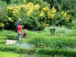 Small Picture rectangular herb garden design Herb Garden Designs for Improving
