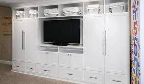 Rec Room Entertainment Center Custom Centers and Media/Wall Units Systems Page 1